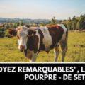 Vache dans un champ - métaphore de la vache pourpre de seth godin pour des lectures inspirantes
